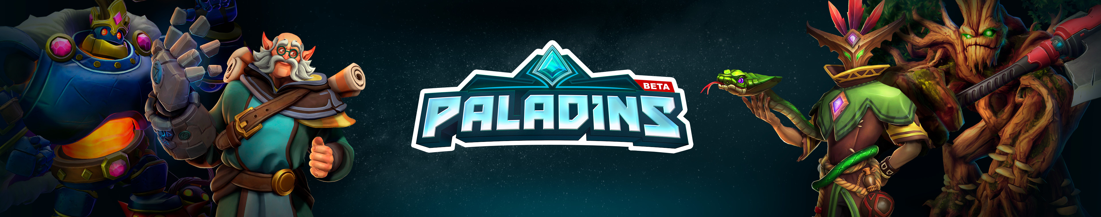 Paladins Holiday Cup
