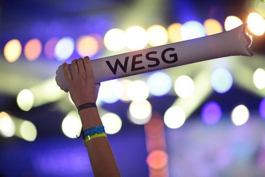Финал WESG Ukraine: весь спектр развлечений для зрителей в Арене