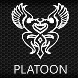 PLATOON TEAM