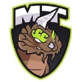 MT Gaming