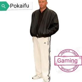PokaifuGaming