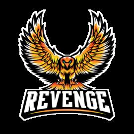 ReVenGe Team