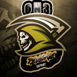 ON3 Revenge Esport