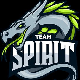 Team Spirit PUBG