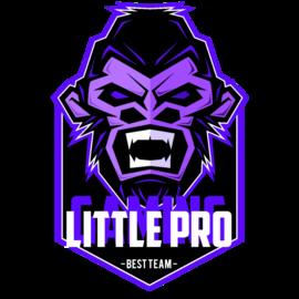 Little Pro