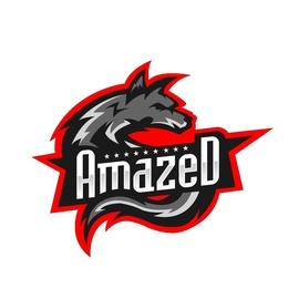 Amazed Gaming