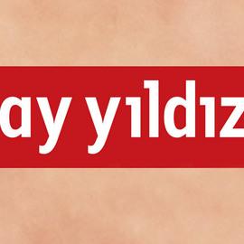 AyYildizTeam
