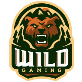 Wild Gaming