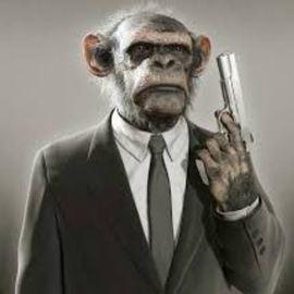 MonkeysSeeMonkeysDo