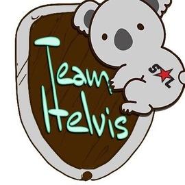 Team Helvis