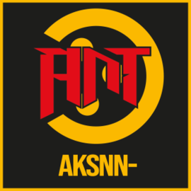 AksNN-