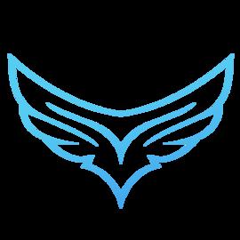 Hawk_BLR