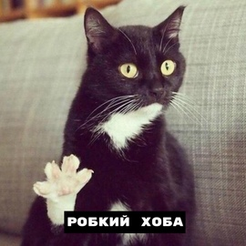 bolsky