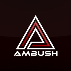 Ambush_Skjold
